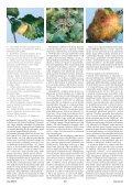 Článek v PDF ke stažení - Živa - Page 3
