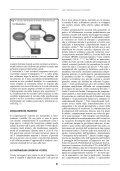 Aspetti neurobiologici dell'attaccamento - Page 4