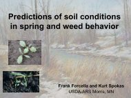 Predictions of soil conditions in spring and weed behavior