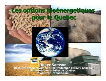Les options bioénergetiques pour le Quebec - Resource Efficient ...