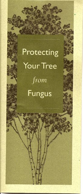 Page 1 Page 2 What is root crovvn fungus and why should I be ...