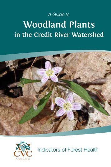 A Guide to Woodland Plants in the Credit River Watershed (1.86 MB)