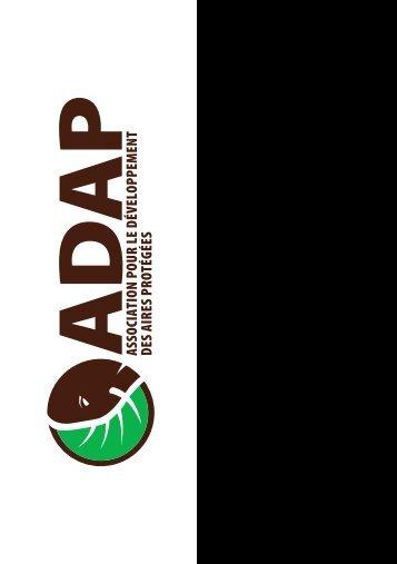 ADAP_Rapport_activites_2013