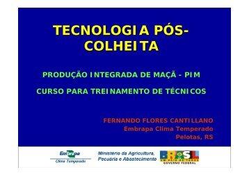 TECNOLOGIA PÓS- COLHEITA - Embrapa Uva e Vinho