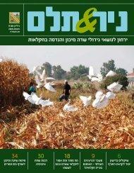 ניר ותלם גיליון מס' 9 - אוגוסט 2008 - ארגון עובדי הפלחה