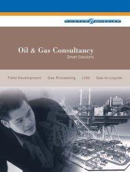 Oil & Gas Consultancy - Foster Wheeler Italiana