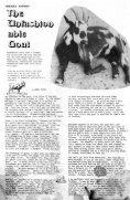 Volume 3 No. 2: February 1974 - Craig Sams - Page 6