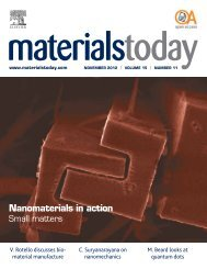 Nanomaterials in action - PageSuite