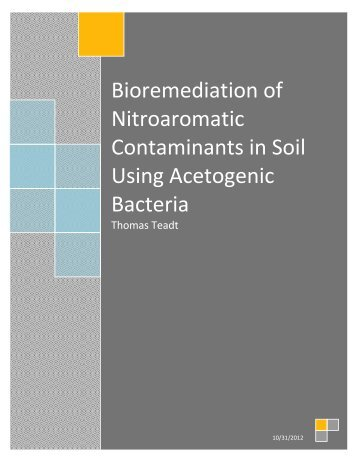 Bioremediation ... ng Acetogenic Bacteria.pdf - Carthage College