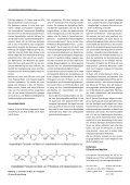 Ein Überblick zur Technologie moderner Schlauchliner - Page 2