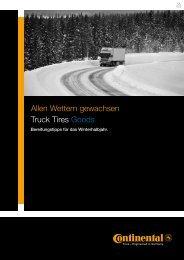 Allen Wettern gewachsen Truck Tires Goods