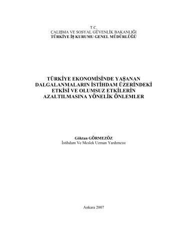 türkiye ekonomisinde yaşanan dalgalanmaların ... - Türkiye İş Kurumu