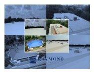 roofs - Savannah Post