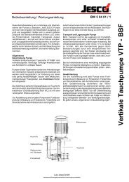 Vertikale Tauchpumpe VTP - BBF - Lutz-Jesco GmbH
