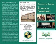 Bachelor of Science - College of Engineering - Wayne State University