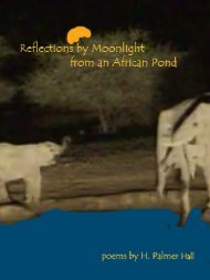 Reflections by Moonlight from an African Pond