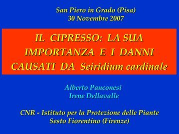 la situazione in Toscana – Dott. Alberto Panconesi - CNR Firenze