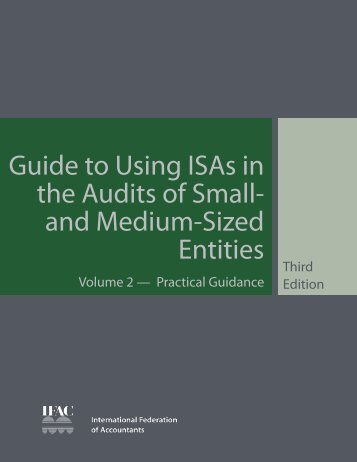 Guide to Using ISAs in the Audits of Small- and Medium-Sized Entities