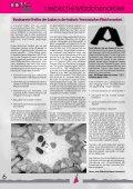 """""""Donna Lotta"""", Heft 14, 2000 - Seite 6"""
