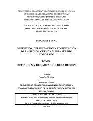 1. Definición y Delimitación.pdf - Plan Estratégico de Malargüe