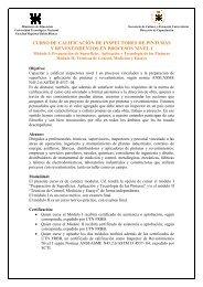 Inspectores de Pinturas y Revestimientos en Procesos ... - UTN FRBB