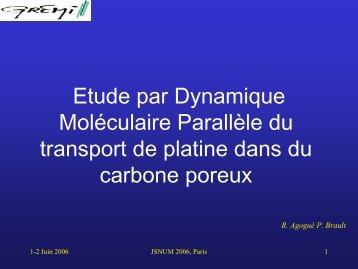 Journées Simulation Numérique, Paris 1-2 juin 2006 - Brault, Pascal