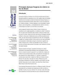 Principais doenças fúngicas da videira no sul do Brasil