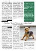 Die Wahrheit hinter solch verlogener Fleisch-Werbung - VgT - Seite 3