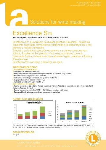 Excellence STR - VINICAS