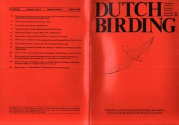 1981-3 - Dutch Birding