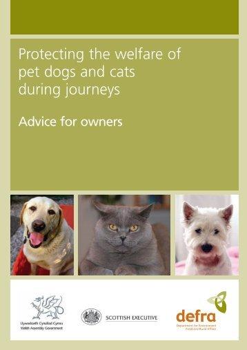 pb10308-dogs-cats-welfare-060215
