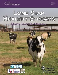 Lone Star Healthy Streams: Dairy Cattle Manual - Texas Forages