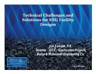 Technical Challenges and Solutions for SNG Facility Designs