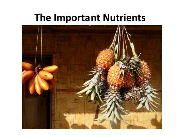 Micronutrients - Seeds of Life