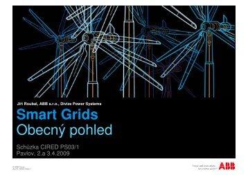 Smart Grids Obecný pohled