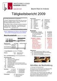 Tätigkeitsbericht 2009 - Ried im Innkreis