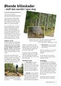 Landbruksbladet 2010 - Kongsvinger Kommune - Page 3