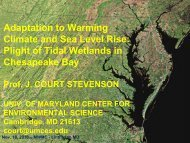 Adaptation to Warming Climate and Sea Level Rise: Plight of Tidal ...