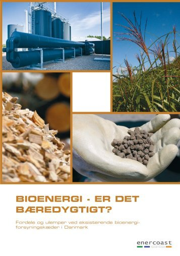 Bioenergi – er det bæredygtigt? - DCA - Nationalt Center for ...
