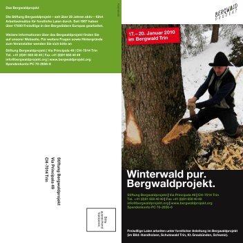 Winterwald pur. Bergwaldprojekt.