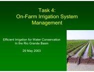 Task 4 - 2013 Rio Grande Basin Initiative Meeting
