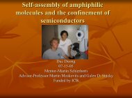 Self-assembly of amphiphilic molecules and the confinement of ...