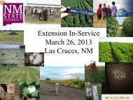 Agronomy and Soils Faculty Introductions - Extension Plant Sciences