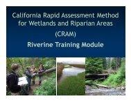 Steps of CRAM Assessment