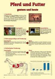 Infoblatt Pferdegerechte Fütterung als PDF-Datei - Marstall