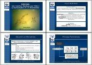 Objectifs et Motivations Principes Fonctionnels - RILK