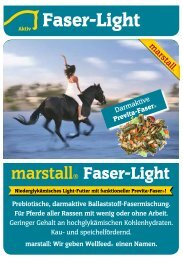 Faser-Light - Marstall