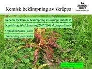 6_Karin Jahr - Kemisk bekämpning mot skräppa.pdf