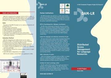 DAM-LR Flyer (PDF)