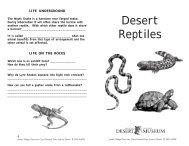 Desert Reptiles